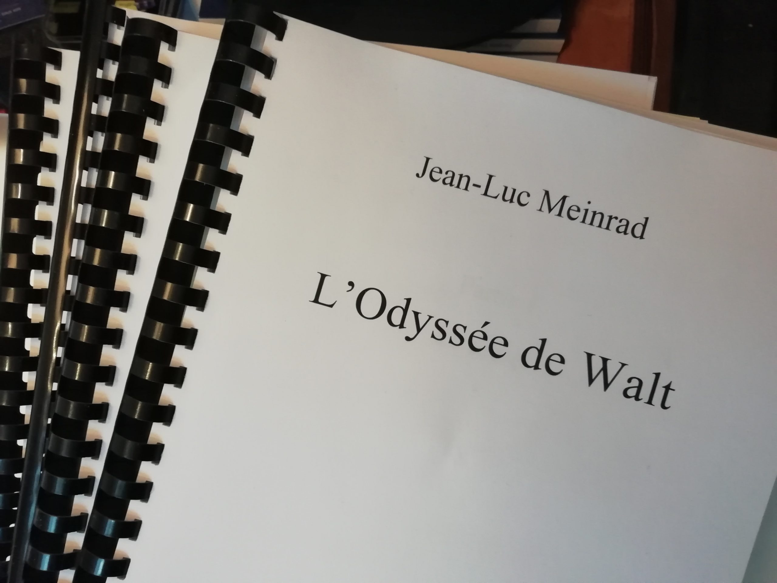 Manuscrit de L'Odyssée de Walt